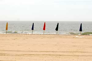 Kite Loft in Ocean City